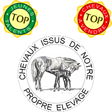 top elevage